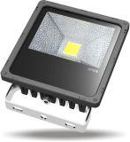Luz de inundación delgada de la buena de calor planta LED de la conducción para el uso al aire libre