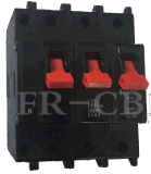 Mini corta-circuito de Sx África (tipo) de la CBI 3p+N
