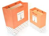 Bolso de compras reutilizable de encargo del papel del regalo de la impresión de la insignia