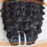 Virgin 자연적인 색깔 사람의 모발 길쌈 씨실 (PPG-l-01906)