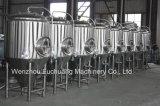 fabbrica di birra della strumentazione di preparazione della birra 3hl micro da vendere