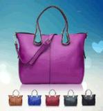 Nuova borsa all'ingrosso di alta qualità di disegno (BDMC097)