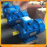 Мотор индукции госпожи 1HP 0.75kw Gphq асинхронный