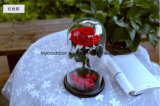 Konserviertes frische Blumen-Hochzeits-Geschenk