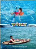 La persona individual o doble Sit on Top 100% Claro Kayak