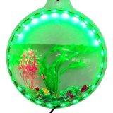 Tazón de fuente de acrílico redondo de los pescados con el LED
