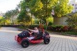 Ce approuvé 80cc Mini Buggy Go Kart Cross Beach