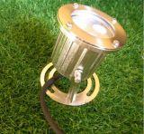 부류를 가진 IP68 3W 12 볼트 수중 LED 빛