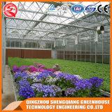 농업 Venlo 꽃 강화 유리 온실