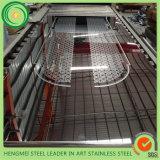 熱い販売の304ミラーはエレベーターの装飾のためのステンレス鋼シートをエッチングした