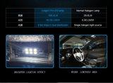 Diodo emissor de luz T10 da luz de sinal das ampolas da matrícula do carro de Cnlight DC12-24V 2W