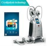 Cryolipolysis amincissant la machine avec 4 traitements de Cryo