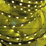 Van de LEIDENE van Epistar SMD 5050 Jaar van de Garantie Strook van het Lint Lichte 3