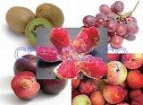 Les Kiwis / rouge / Grenade Globe raisin