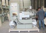 De automatische Machine van de Pers van de Koude en Hete Olie/Olie die Machine maken Beste Prijs hebben