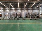 Tratamento de água 13T da linha de produção completa