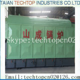 증기 보일러 (DZL, SZL, SHL)의 직업적인 제조자