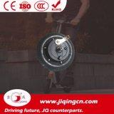 12V 24V 36V 8 Zoll-intelligenter zwei Räder Gleichstrom-Motor