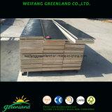 Madera dura, pegamento WBP, madera contrachapada de conformación especial para madera