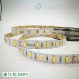 Striscia 60LEDs/M di SMD5630/5730 LED 15W/M con En62471