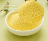 Polvere verde del kumquat Powder/Lime