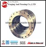 Flange forjada de aço carbono para acessórios de tubos (ZH-CS-001)