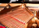 Konzertpiano-Klavier (HG-275E)