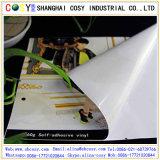 Vinyle auto-adhésif, roulis de vinyle de PVC, collant de vinyle