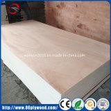 Madera contrachapada de la madera del anuncio publicitario de productos de la madera del abedul/del pino/del álamo