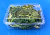 플라스틱 식품 포장 상자 청과 포장 상자 1000gram