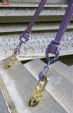 Sistema di sollevamento universale prefabbricato dell'ancoraggio della frizione del calcestruzzo prefabbricato per l'ancoraggio di sollevamento capo sferico