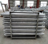 Ce Certification Hot DIP Galvanized Ground Screw