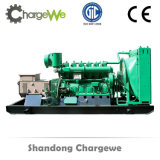 Générateur de gaz à charbon de 20kw-600kw à propos du gène de lit à mine de charbon 50Hz / 60Hz