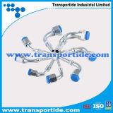 Transportide ha foggiato i montaggi di tubo flessibile/accessori per tubi con uno stampo