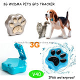 Inseguitore impermeabile di GPS dell'animale domestico di IP66 3G con il collare (V40)