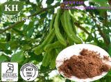 Carod Baum-Frucht-Hülse-Auszug, Auszug des Ceratoniasiliqua-L.