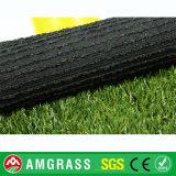 Svago professionale che modific il terrenoare il tappeto erboso di Astro dell'erba