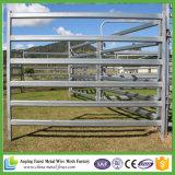호주 표준 가축 가축 위원회 최신 판매