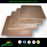 Núcleo de chopo de alta calidad, la película de pino la madera contrachapada