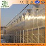 O policarbonato novo do projeto de China 2017 apainela estufas