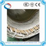 Motore protetto contro le esplosioni di raffreddamento ad acqua delle coperture d'acciaio di Ybsd