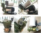 Pompe à eau électrique auto-amorçante automatique de Wedo 1awzb750