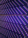 P16 de LEIDENE van de Openlucht Volledige LEIDENE van de Kleur Module 2r1g1b van de Vertoning Matrijs van de PUNT