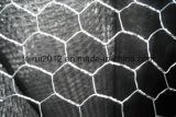 Fábrica de malla de alambre tejido hexagonal