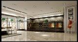 女性衣服の店デザインのための優雅な壁に取り付けられた金属の衣服の陳列だな