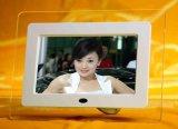 Kundenspezifischer multi Digital-Bilderrahmen der Funktions-7inch