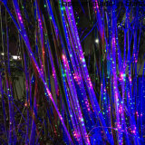 옥외와 실내를 위한 Laser 크리스마스 불빛