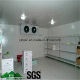 Kühlraum, Tiefkühltruhe für Nahrung, Abkühlung-Gerät