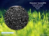 Het Kalium Humate van de Meststof van het gebladerte in de Prijs van China
