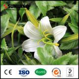 結婚式のための中国の製造業者の性質の美の人工花